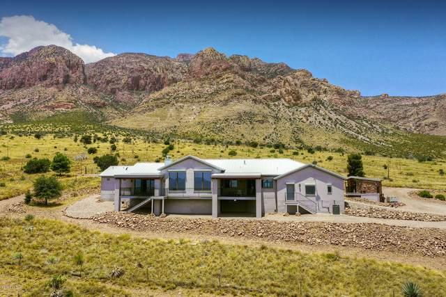 951 W Sanford Road, Portal, AZ 85632 (MLS #22016907) :: The Property Partners at eXp Realty