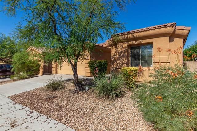 10435 E Rita Ranch Crossing Circle, Tucson, AZ 85747 (#22016925) :: The Local Real Estate Group | Realty Executives