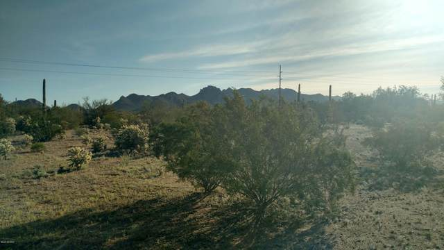 2492 N Camino Avra, Tucson, AZ 85743 (MLS #22016974) :: The Property Partners at eXp Realty