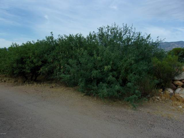 Lot 77 S Mohawk Drive #77, Safford, AZ 85546 (#22016978) :: Long Realty - The Vallee Gold Team