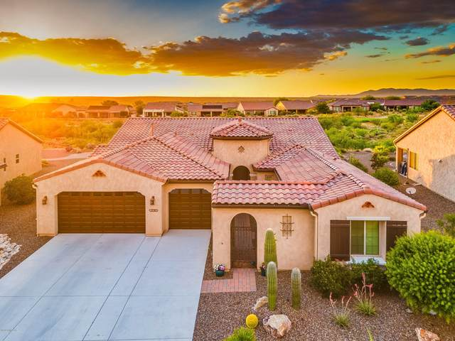 32382 S Egret Trail, Oracle, AZ 85623 (#22016981) :: Long Realty - The Vallee Gold Team
