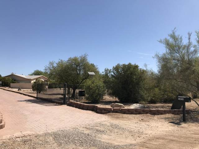3450 W Camino Christy, Tucson, AZ 85742 (MLS #22017066) :: The Property Partners at eXp Realty