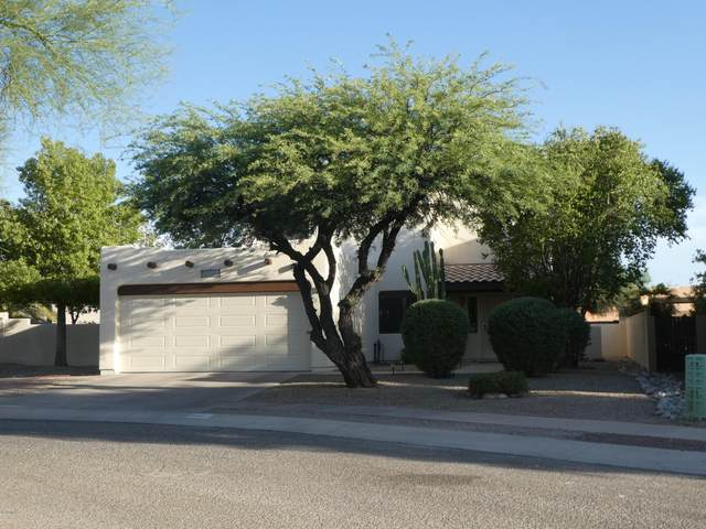 3401 W Gray Dove Court, Tucson, AZ 85742 (MLS #22017069) :: The Property Partners at eXp Realty