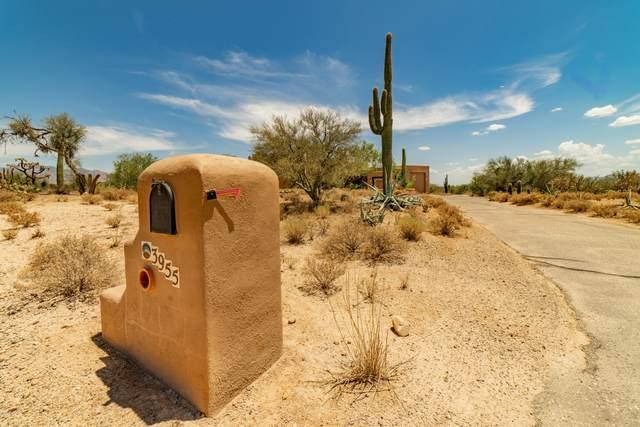 3955 W Potvin Lane, Tucson, AZ 85742 (#22017071) :: Long Realty - The Vallee Gold Team