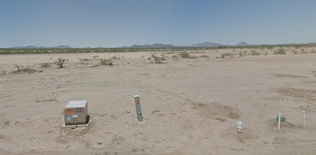 5531 N Lone Owl Trail, Marana, AZ 85653 (#22017103) :: Long Realty - The Vallee Gold Team