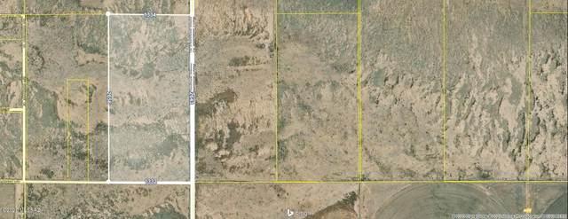 80 Acres Central Hwy & Bagby R #33, Mc Neal, AZ 85617 (#22017115) :: The Josh Berkley Team