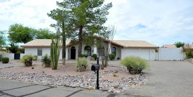 6933 W Hermitage Place, Marana, AZ 85743 (#22017293) :: Long Realty - The Vallee Gold Team