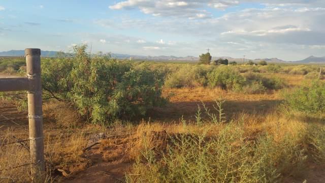 TBD N Kings Highway #0, Douglas, AZ 85607 (#22017299) :: Long Realty - The Vallee Gold Team