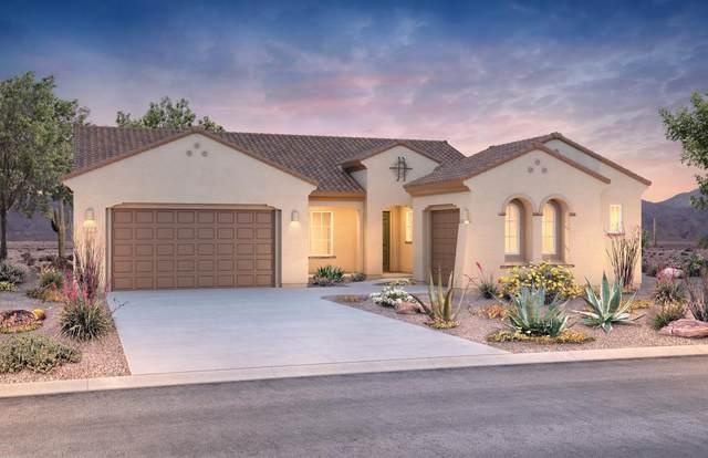 8508 N Van Cleeve Lane, Tucson, AZ 85743 (#22017309) :: AZ Power Team   RE/MAX Results