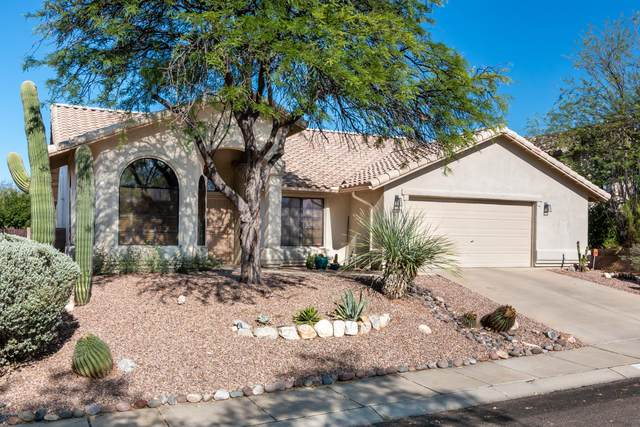 11671 N Europa Pl Place, Tucson, AZ 85737 (#22017342) :: Long Realty - The Vallee Gold Team