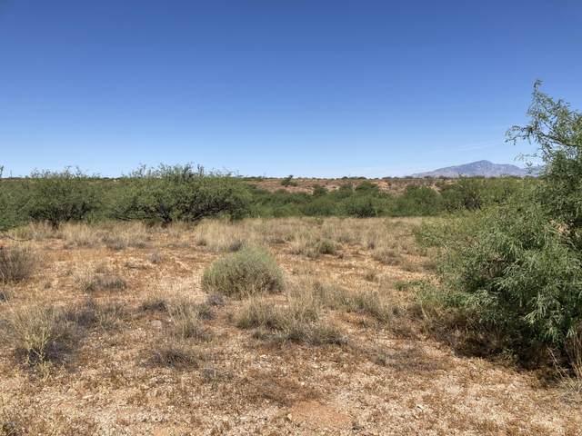 86 S Desert Senna Trail #86, Benson, AZ 85602 (#22017397) :: Long Realty - The Vallee Gold Team