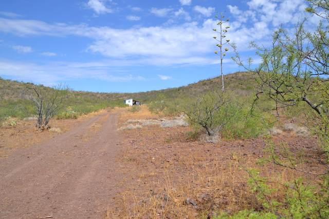 Tbd N Lobo Road -, Douglas, AZ 85607 (#22017730) :: Long Realty - The Vallee Gold Team