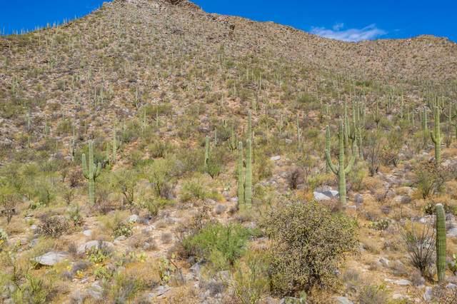 4110 W Cayton Mountain Drive #128, Marana, AZ 85658 (#22017790) :: Kino Abrams brokered by Tierra Antigua Realty