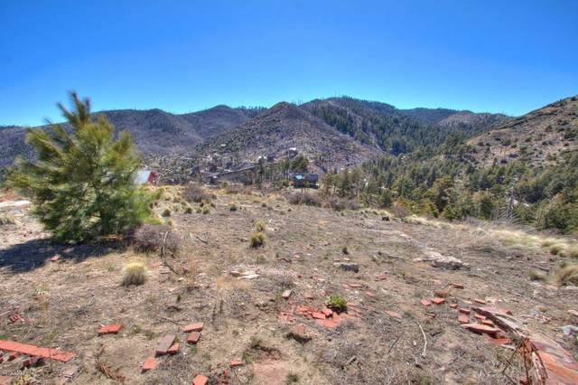13048 N Upper Loma Linda Lane #14, Mt. Lemmon, AZ 85619 (#22018272) :: eXp Realty
