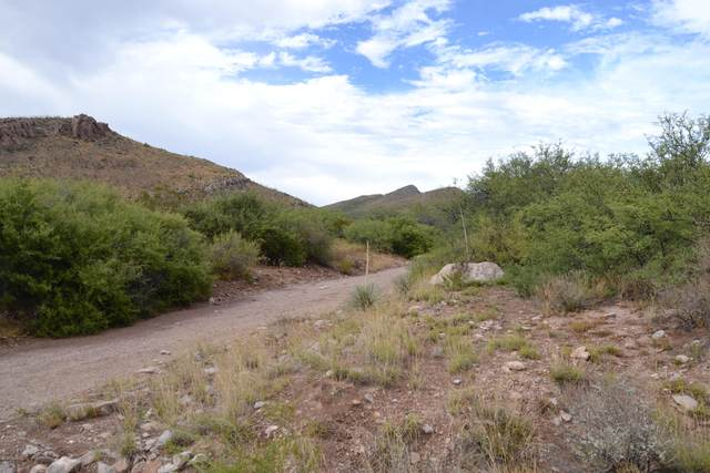TBD 24 AC E Get Lost Road -, Douglas, AZ 85607 (#22018342) :: Long Realty - The Vallee Gold Team