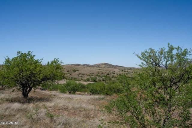 13940 W Jalisco Road #25, Arivaca, AZ 85601 (MLS #22018365) :: The Property Partners at eXp Realty