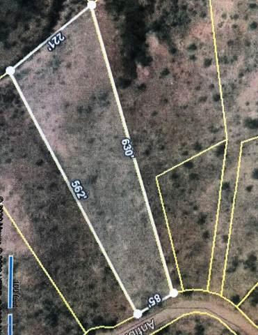 344 Anfibio Court #82, Rio Rico, AZ 85648 (MLS #22018371) :: The Property Partners at eXp Realty