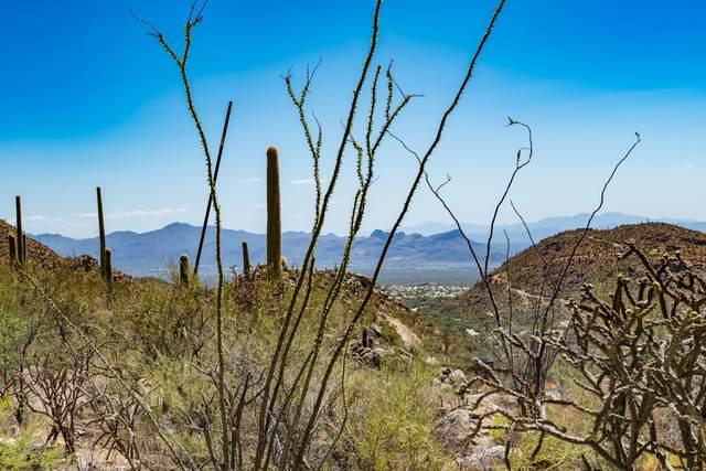 4375 W Cush Canyon Loop #83, Marana, AZ 85658 (#22018583) :: Keller Williams