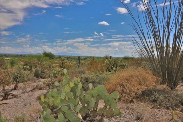 6036 E Roadrunner Haven Place #124, Tucson, AZ 85750 (#22018625) :: Luxury Group - Realty Executives Arizona Properties
