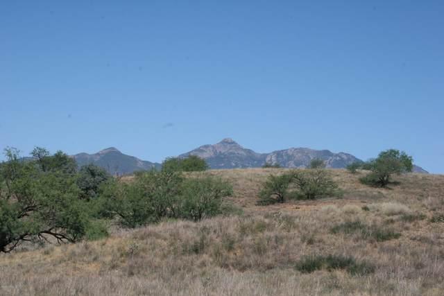 0 Sierra Grande Ranch Road 4A, Sonoita, AZ 85637 (#22018675) :: The Josh Berkley Team
