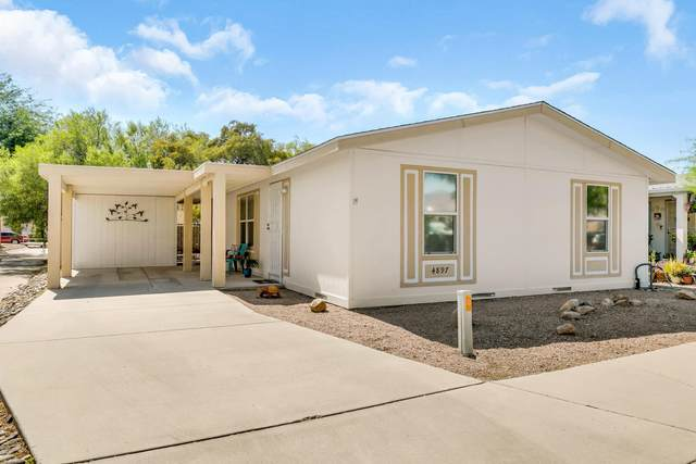 4897 N River Vista Drive, Tucson, AZ 85705 (MLS #22019025) :: The Property Partners at eXp Realty