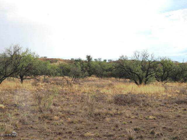 15255 W Cota Road, Arivaca, AZ 85601 (MLS #22019101) :: The Property Partners at eXp Realty