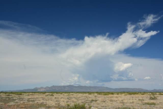 TBD W Sunday Afternoon Road, Mc Neal, AZ 85617 (#22019243) :: The Josh Berkley Team