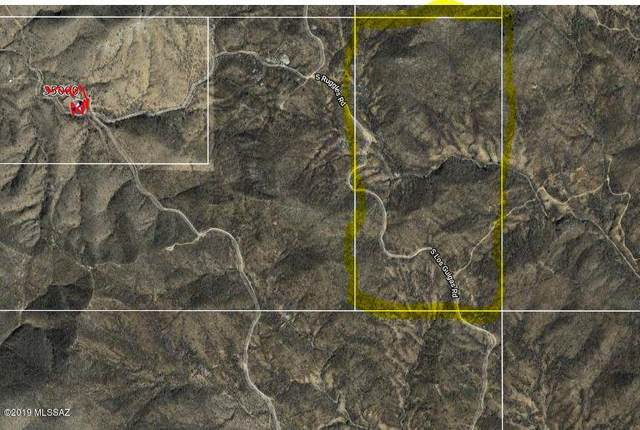 S Los Guigas Road #1, Arivaca, AZ 85601 (MLS #22019364) :: The Property Partners at eXp Realty