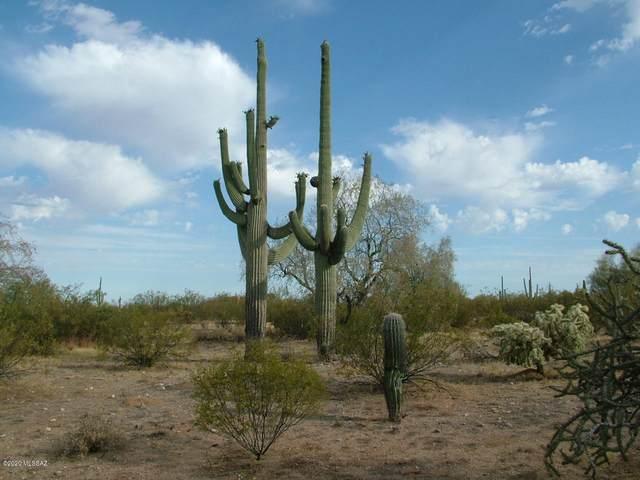 38790 S Gavin Drive, Marana, AZ 85658 (#22019404) :: Tucson Property Executives