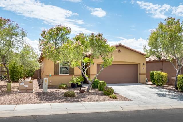 12064 N Meditation Drive, Marana, AZ 85658 (#22019440) :: Realty Executives Tucson Elite