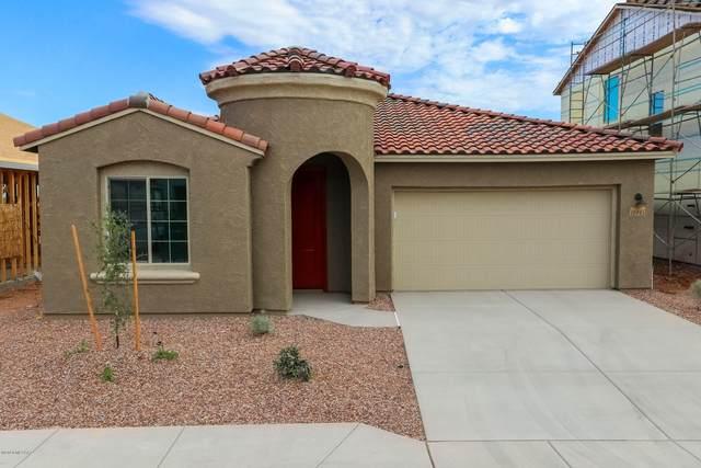 10045 E Clark Springs Trail, Tucson, AZ 85747 (#22019524) :: The Josh Berkley Team