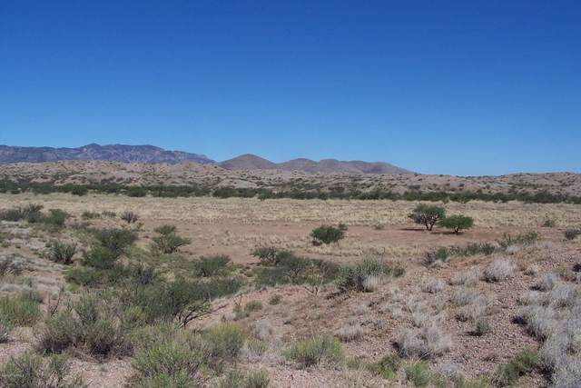 81.24ac Warpaint Path, Willcox, AZ 85643 (#22019646) :: Long Realty - The Vallee Gold Team