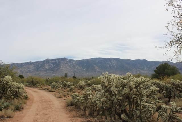 3501 E Golder Ranch Drive, Catalina, AZ 85739 (#22019710) :: Long Realty Company