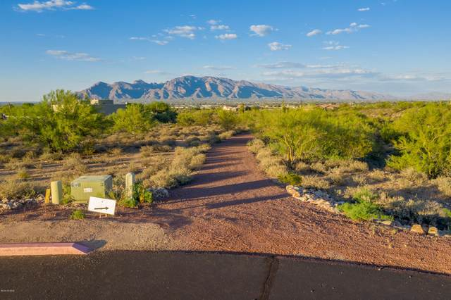 2850 W Black Cloud Court W #10, Tucson, AZ 85745 (#22019820) :: Long Realty - The Vallee Gold Team