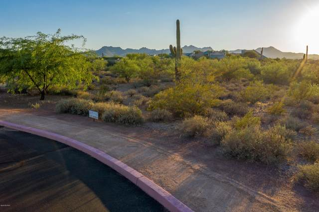 2869 W Black Cloud Court W #12, Tucson, AZ 85745 (#22019826) :: Long Realty - The Vallee Gold Team