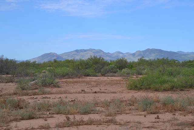 4879 W Churella Trail -, Mc Neal, AZ 85617 (#22019833) :: Long Realty Company