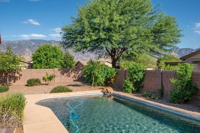3610 E Secretariat Road, Tucson, AZ 85739 (#22019886) :: Long Realty Company