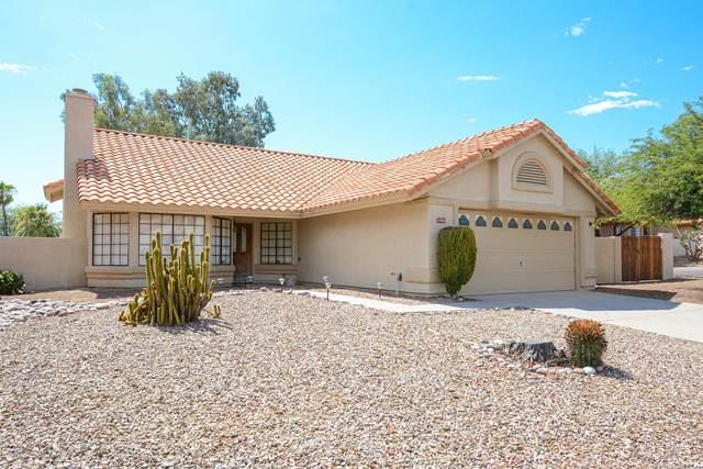 11751 N Dragoon Springs Drive, Oro Valley, AZ 85737 (#22019937) :: Tucson Property Executives