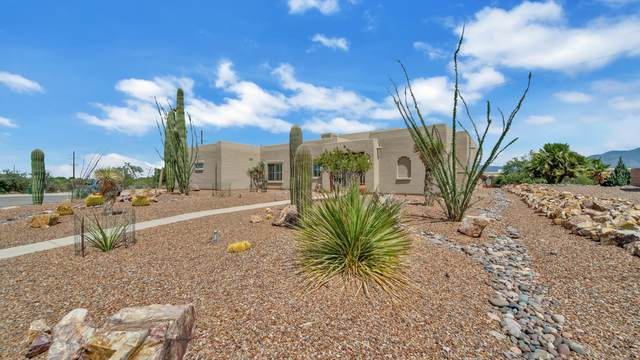 735 S Placita Amena, Green Valley, AZ 85614 (#22020049) :: Long Realty - The Vallee Gold Team