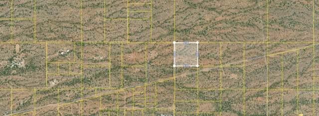 TBD Hemlock, Marana, AZ 85658 (#22020145) :: Tucson Property Executives