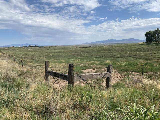 21 Paint Trail #101, Sonoita, AZ 85637 (#22020333) :: The Local Real Estate Group | Realty Executives