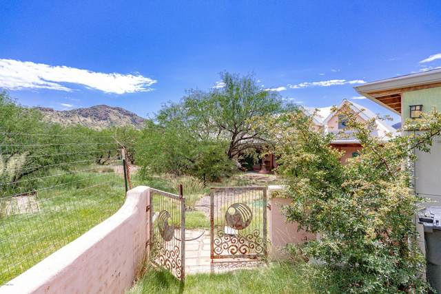 62 Red Rock Drive, Patagonia, AZ 85624 (#22020483) :: Long Realty - The Vallee Gold Team