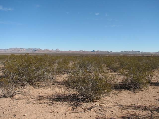 160.85 Acr N Wood Canyon Road, San Simon, AZ 85632 (MLS #22021323) :: My Home Group