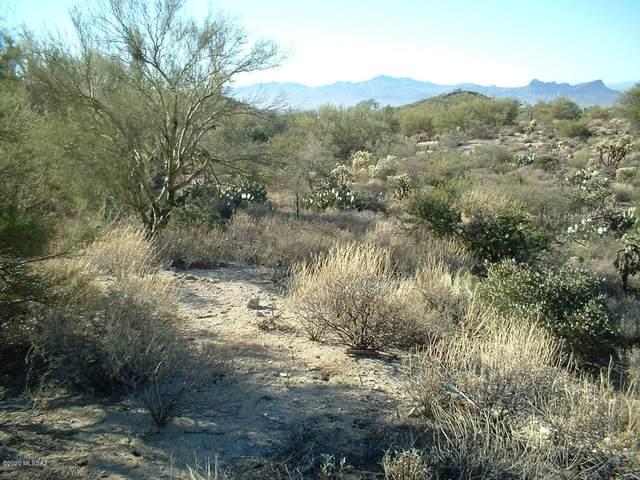 13870 N Dove Canyon Pass #3, Marana, AZ 85658 (#22021717) :: Kino Abrams brokered by Tierra Antigua Realty