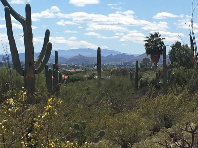 2939 E Camino A Los Vientos #36, Tucson, AZ 85718 (#22021862) :: eXp Realty