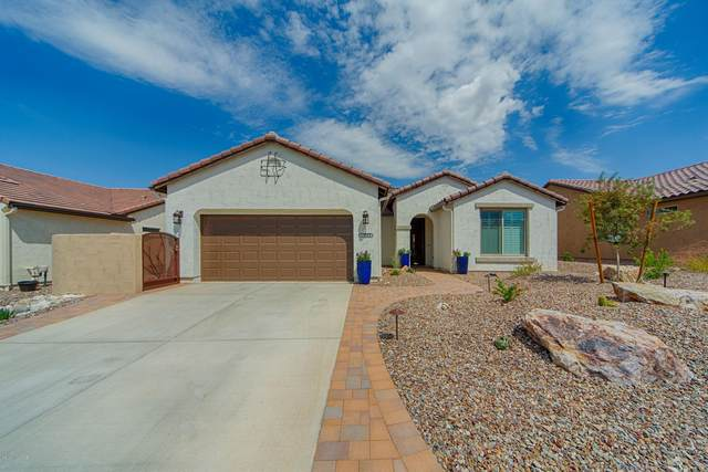 61568 E Dead Wood Trail, Oracle, AZ 85623 (MLS #22021873) :: The Property Partners at eXp Realty