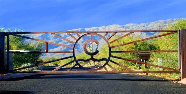 8375 S Tumbling R Ranch Place L-164, Vail, AZ 85641 (#22022108) :: Keller Williams