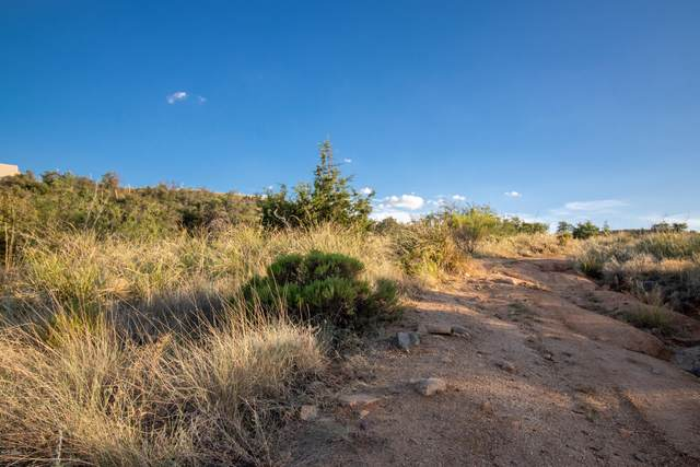 4.63 Acres N Calle Futura, Oracle, AZ 85623 (#22022370) :: Long Realty - The Vallee Gold Team