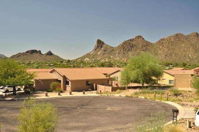 4987 S Terrain Drive #9, Tucson, AZ 85746 (MLS #22022439) :: The Property Partners at eXp Realty