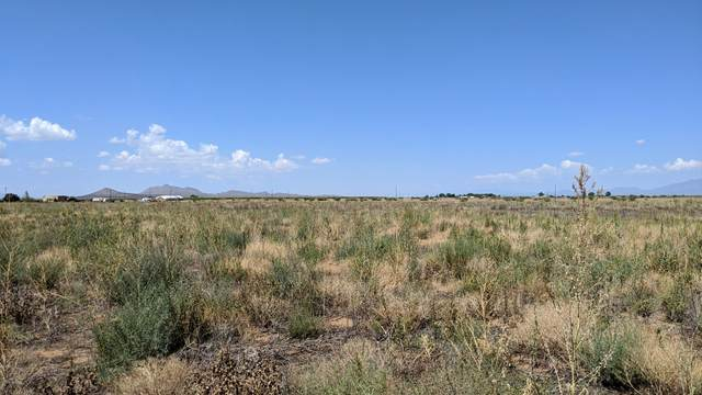 3.34 Acres ( 3 Lots) E. Chiricahua Drive --, Pearce, AZ 85625 (#22022466) :: Long Realty - The Vallee Gold Team
